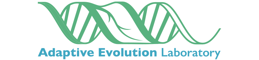 Adaptive Evolution Logo